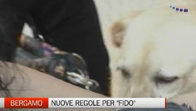 Bergamo - Nuove regole per Fido