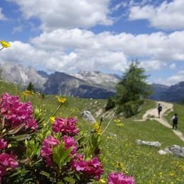 Aquiloni e neve d'estate Sorprese della Val Gardena