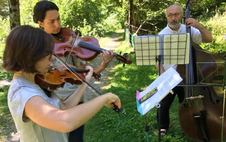 Nelle pinete di Cusio crescono i violinisti  «Un contesto mozzafiato» - Il video