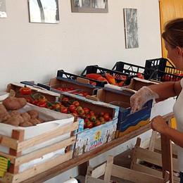 Le aziende «bio» a Bergamo sono 170 «Ora si devono rafforzare i controlli»