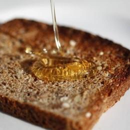 Il miele bergamasco finisce ko «Persa metà produzione per il clima»
