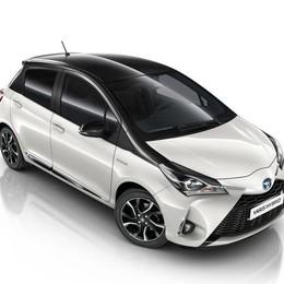 Yaris Trend White Edition La Toyota solo ibrida