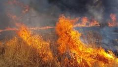 Incendi e siccità I moniti dell'estate