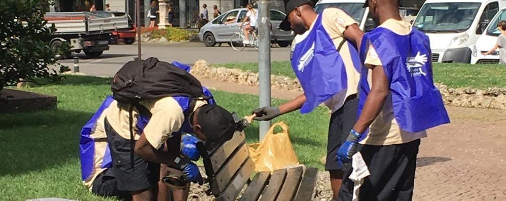 Profughi e volontari al lavoro insieme Verniciano le panchine di Bergamo