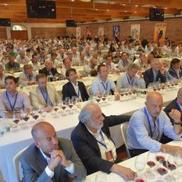 La cultura del vino 4 corsi in partenza