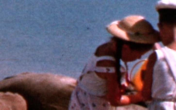 Filmati amatoriali d'epoca cercansi  Dalmine recupera storia e memoria