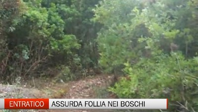 Follia nei boschi di Entratico, tagliole nel terreno
