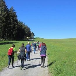 Corsi di nordic walking  sull'altopiano di Bossico
