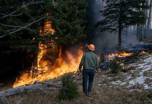 La protezione dagli incendi boschivi