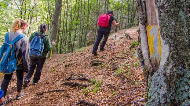 Escursione in Valsassina, sulle tracce delle streghe