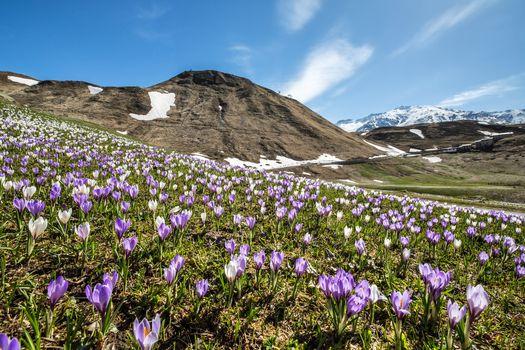 La bellissima primavera di Orobie  E' in edicola il numero di maggio
