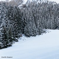 Ciao Emanuele! Che desiderare di piu': giornata meravigliosa, neve fresca ed incontaminata, silenzio assoluto, sembrava di essere lontani km dal parcheggio di spiazzi super affollato. Buona Domenica!