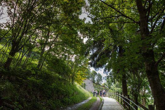 Sentiero per disabili, venerdì cerimonia di intitolazione