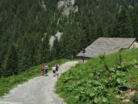 Cheese Trekking in Val Brembana