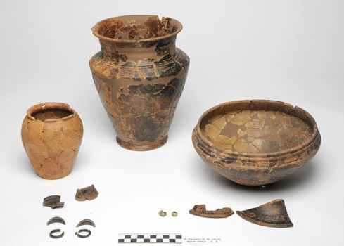Prima di Como, in mostra l'archeologia