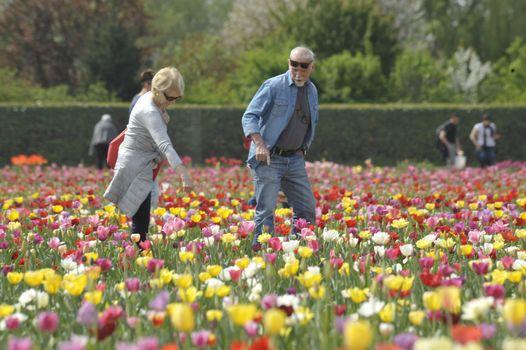 Orobie, a marzo viaggio tra fiori e storia