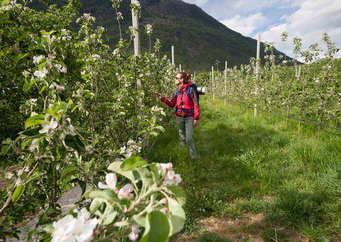Da Ponte in Valtellina fino a Tirano
