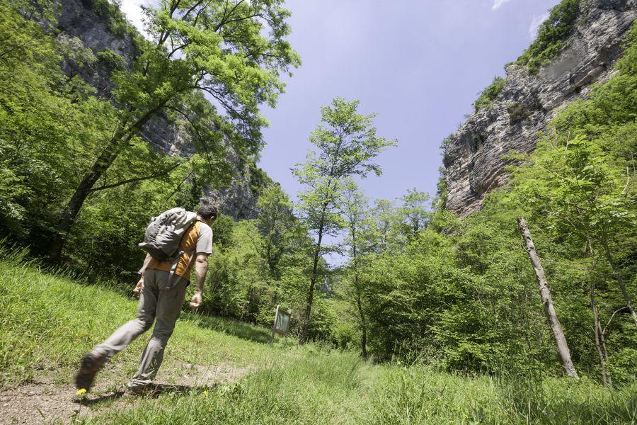 Valle Bova, il sentiero delle scale