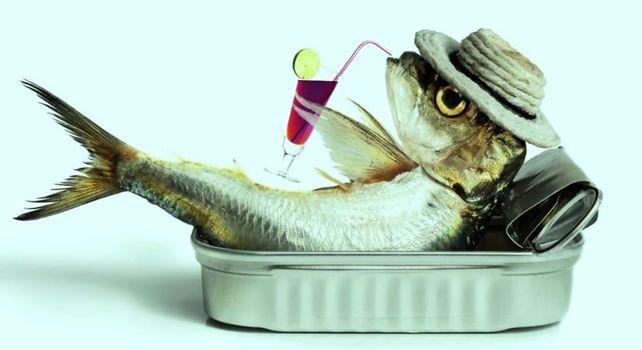 Slow Lake Festival: a Como storie di pesci e pescatori