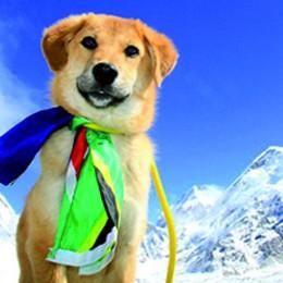 «Rupee»  sull'Everest