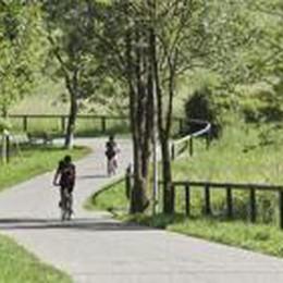Meno sprechi e parchi collegati  Sogno verde nel cuore di Bergamo