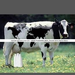 Albino, latte e polenta  al Mercato agricolo e non solo...