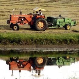 Contro il Made in Italy «taroccato»  agricoltori bergamaschi  in campo