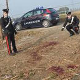 Ucciso a bastonate e abbandonato  Fermati due colleghi dell'albanese