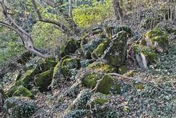 I resti di lavorazioni delle cave rimasti nel bosco