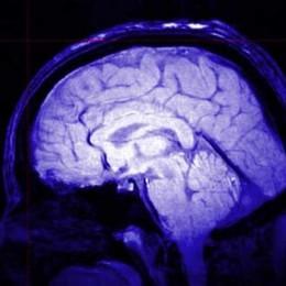 Allenare il cervello  contro l'Alzheimer