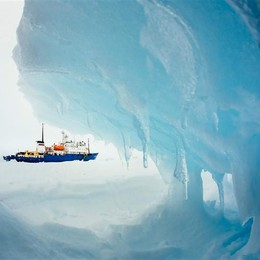 Dalla parte dei ghiacci
