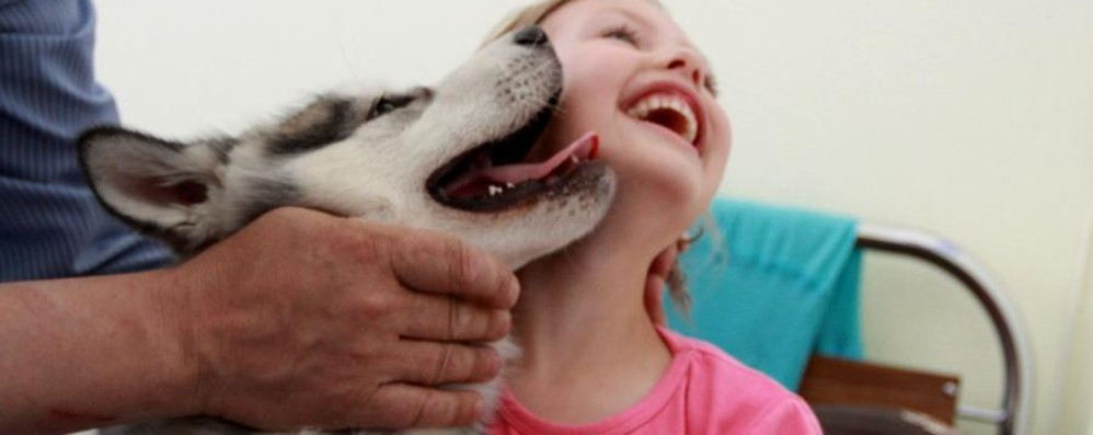 Un aiuto contro le fragilità Alla scoperta della «pet therapy»