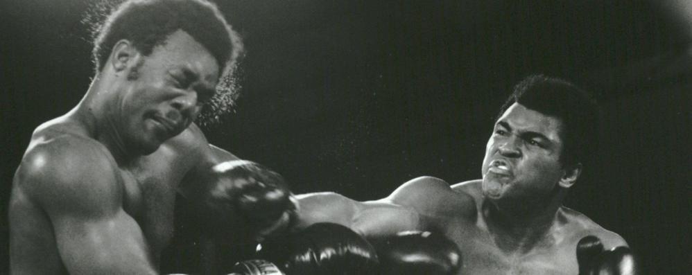 Quando la boxe era un assolo di jazz 40 anni fa l'epica sfida Alì-Foreman