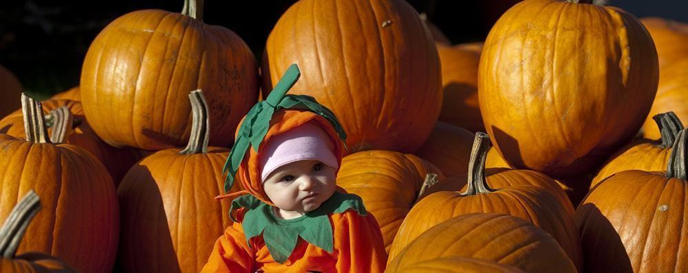 La Campionaria alla Fiera Halloween impazza in provincia