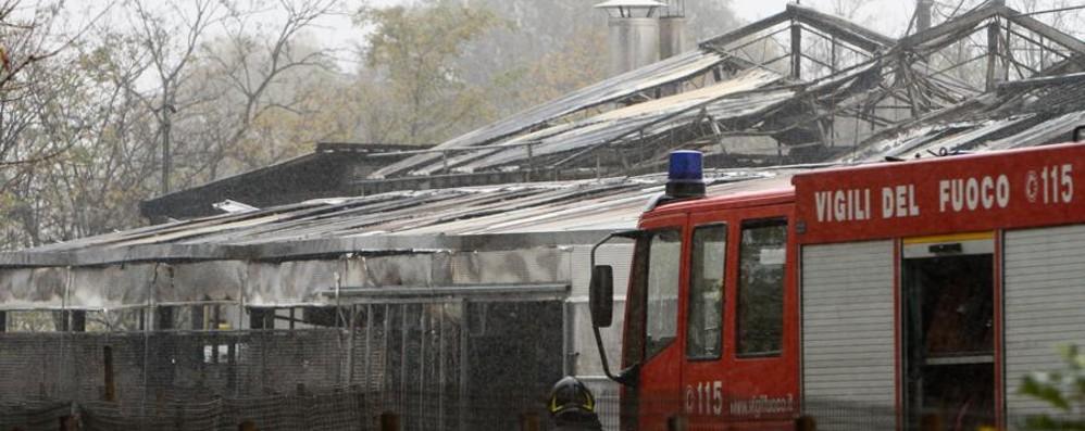 L'incendio alla «Green Flor»: un milione di danni, ipotesi dolosa