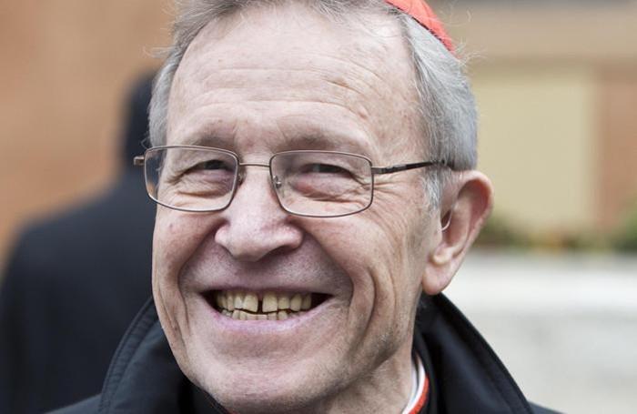 Cardinale Walter Kasper