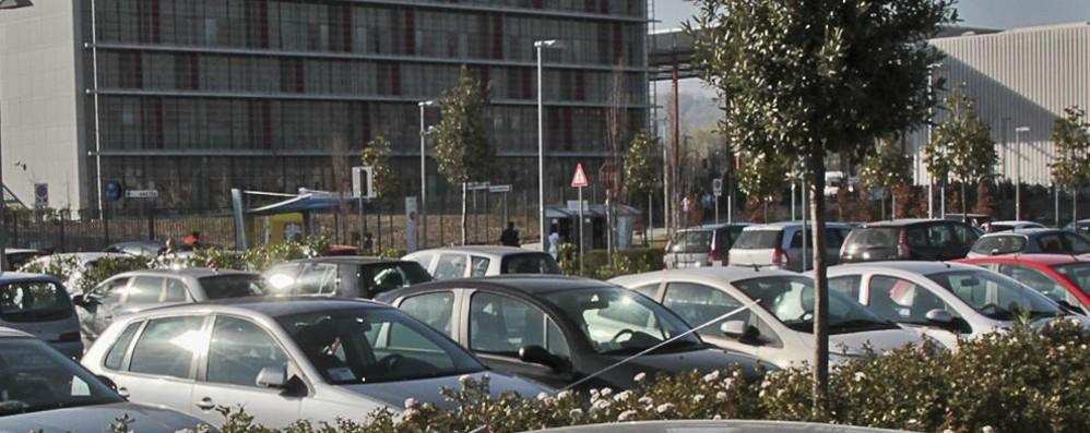 «Parcheggio ospedale gratuito» La petizione adesso è on line