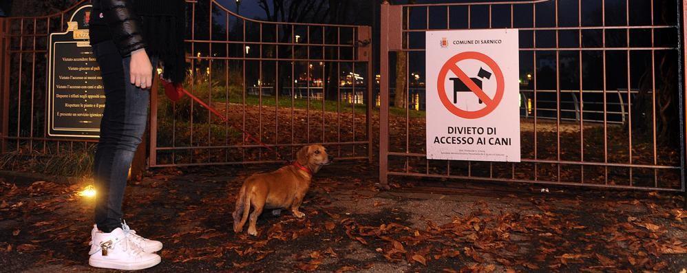 Senza cani nei parchi a Sarnico Ma il Tar ha sospeso il divieto