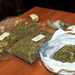 Marijuana arrivata con la Posta Incastrato: ne aveva ben 4 chili