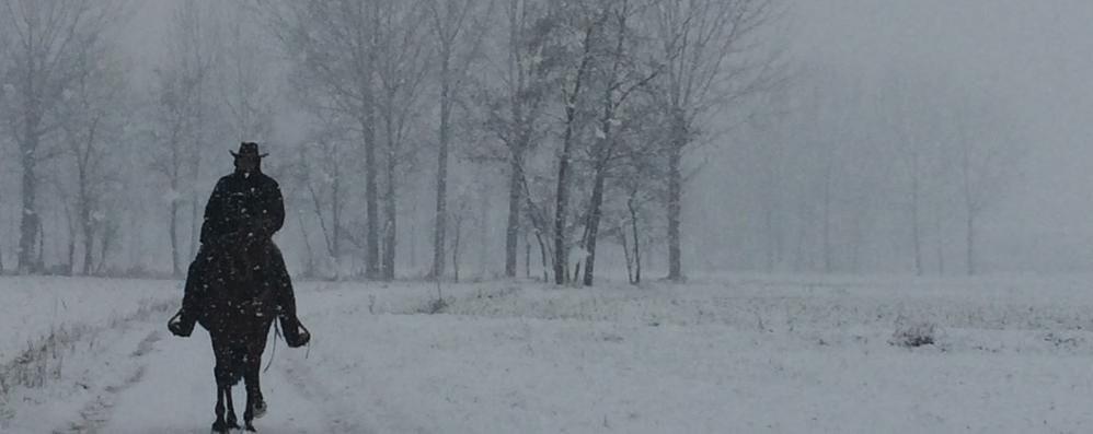 Dopo la neve il freddo al comando E delle foto meravigliose dei lettori