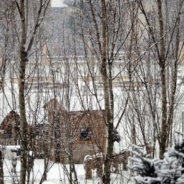 Neve al parco Villaggio Sposi foto di Giuseppe