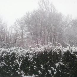 Neve a Canonica d'Adda foto di Alessio