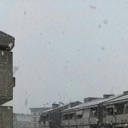 Neve a Seriate foto di 338...