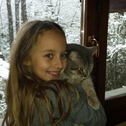 Cate, il micio e la neve foto di Emanuele