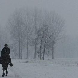 Neve a Mozzanica, foto di Andrea Bussi
