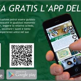Il parco di Valbrembo si fa interattivo  App e concorso per «viverlo» meglio