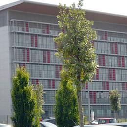 Ospedale, sette i primari emeriti  «Hanno fatto grande la sanità»