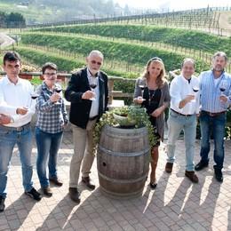 Il vino è in fermento in Bergamasca  Nuova associazione indipendente