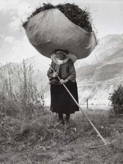 Una fotografia «In Val di Cogne» di Pepi Merisio
