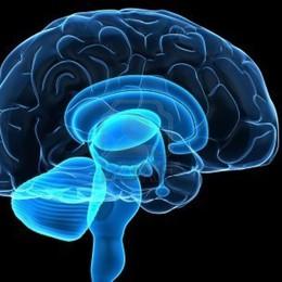 Un test del sangue  predice il rischio Alzheimer